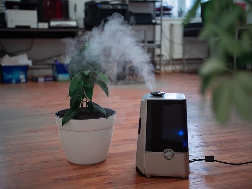 humidifier benefits