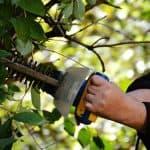 The Best Hedge Trimmer In Australia: Stihl, Bosch